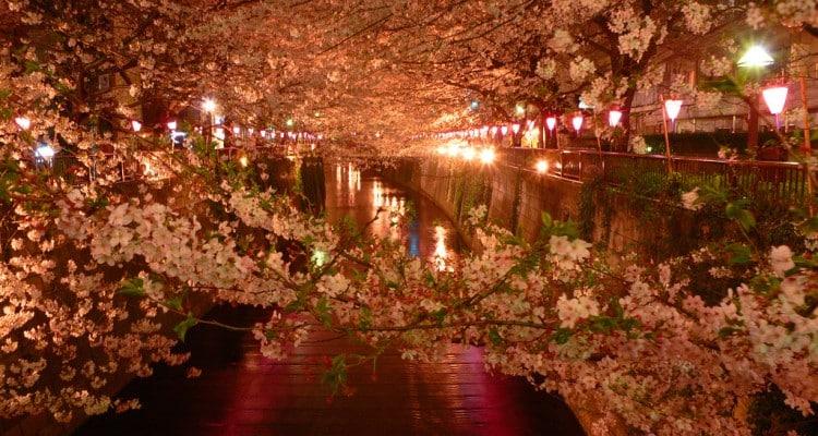 rituel relaxant japonnais 1